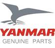 Distributor Spare Part Genset Yanmar